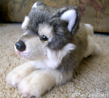 Yomiko Classics Wolf Pup by The-Toy-Chest