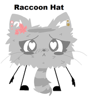 Raccoon Hat Reference by Aquarithyst