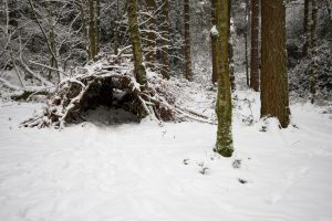 Stock...  Snow 1 by RhysBriers