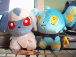 Absol and Shinx plushies by Fluna