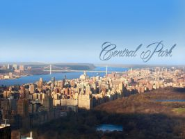 Central Park and George Washington Bridge by trentsxwife