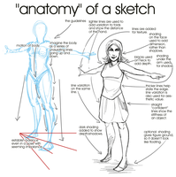 Anatomy of a Sketch by propensity