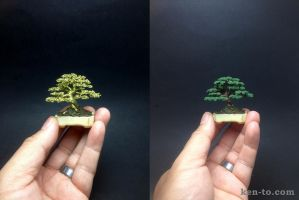 Mame informal upright wire bonsai tree by Ken To by KenToArt