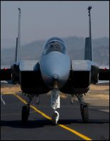 F-15C II by Deoradhain