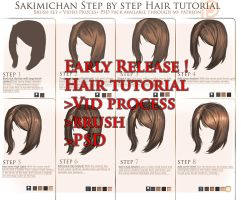 Full hair tutorial package release ! by sakimichan