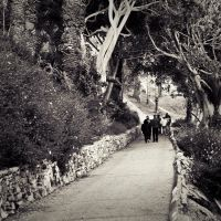 San Pedro Pathway by Abfc