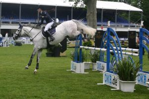 Show Jumping Stock 020 by LuDa-Stock