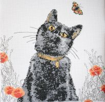 Cat and Poppies by StitchingDreams