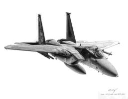F-15 Eagle 49th TFW by Sketchh22
