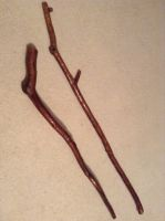 Custom walking sticks by balin21