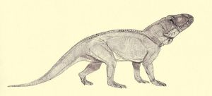 Erythrosuchus by Kahless28