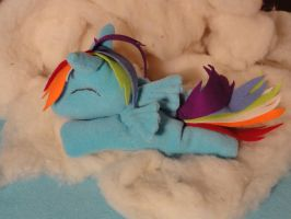 Rainbow Dash plushie 5 by araseses