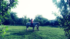 riding a horse1 by 99andreea