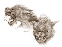 LOTR Wargs - Pencil Study by Lizkay