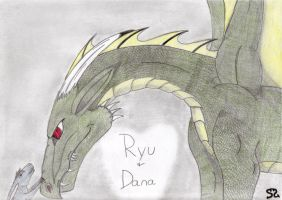 -RQ- Ryu and Dana by Zs99