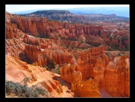 Red bryce by tonyeck