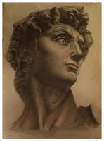 The statue of david by coolen007
