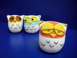 3 owls by httpecho