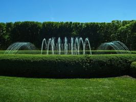 Longwood Gardens 11 by Dracoart-Stock