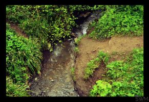 Little Stream by SwitchWorks
