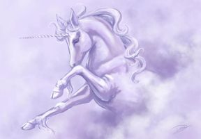 Week 1 - Unicorn by bdunn1342