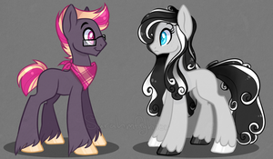 Pony Adopts Auction by sararini