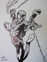 Ultimate Spider-Man by TheHypersonic55