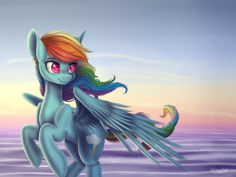 MLP - Rainbow Dash by WingsterWin