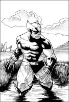 Wolverine in the Wetlands BW by dio-03