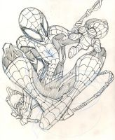 Amazing Spider-Man Pencils by Fexx-Neon