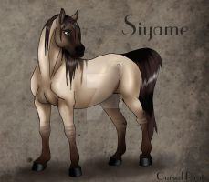 Siyame Reference by the-Cursed-Pirate