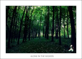 Alone in the woods by GooBeenMD