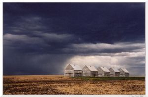 Stormy Farmland by TaraTrigg