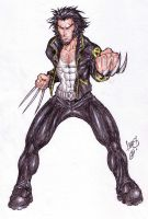 Wolverine 02 by LucasAckerman