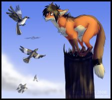 Heythere littlebird. by combustication