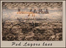psd layers for lace brushes by AzurylipfesStock