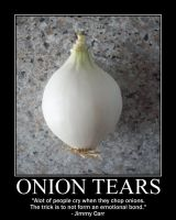 Onion Tears by Balmung6