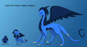 Luna the moon night dragon ref sheet by HeroHeart001