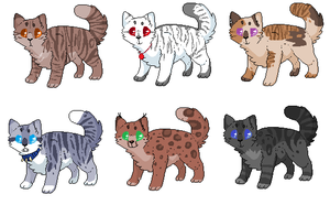 :omg! special adopts: by MadiLoves