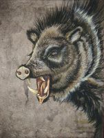 Javelina by HouseofChabrier