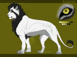 Karume Reference Sheet by soulspoison