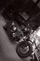Harley Davidson 2 by RaiDEn1979