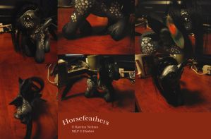Horsefeathers by Feimi