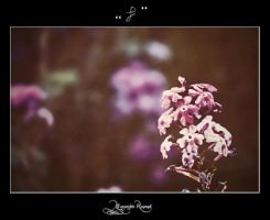 Flower222 by pure52hart