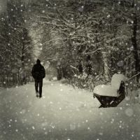 snowy day by photoflake
