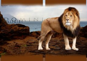 LionRock by oceancoralgraphics