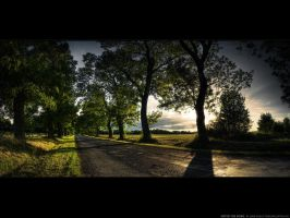 Enter the road WP by realityDream