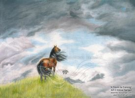 A Storm is Coming by Aryenne