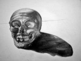 Skull by bloodfilledlungs