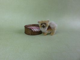 1:12 scale miniature longhaired chihuahua dog by squizzy7o7